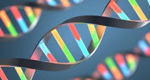 Blockchain vs Cryptocurrency Metaphor DNA Genetics